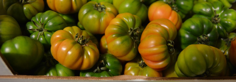 Welcome to Grönsakshallen Sorunda, specialist supplier of fruit and vegetables to restaurants and catering market